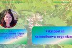 Vitalnost in samoobnova organizma